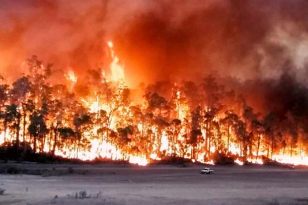 火事 現在 オーストラリア